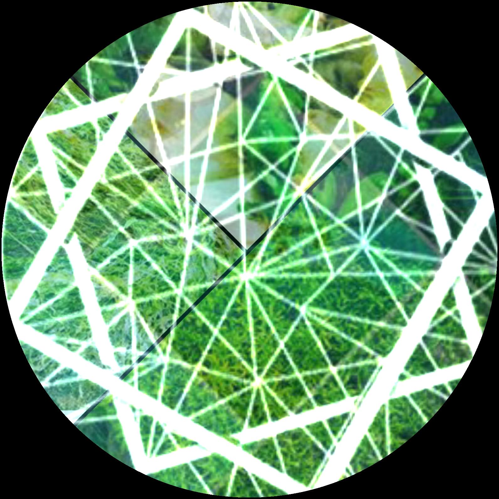 Green Collage Pfp Icon Instagram Background