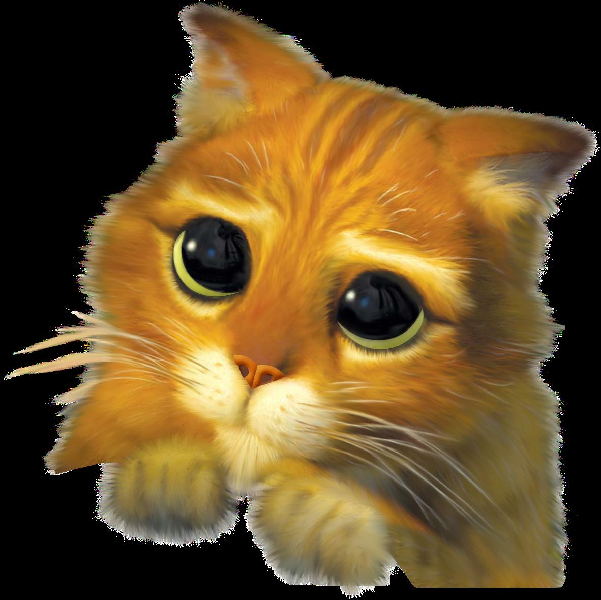 Shrek Cat Catface Freetoedit