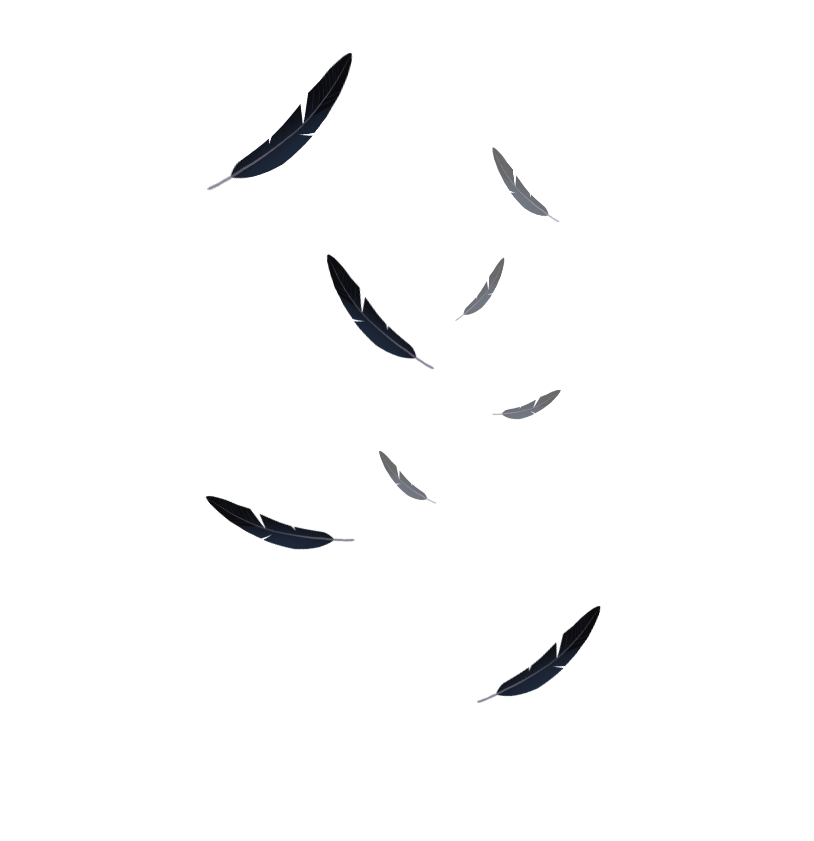 falling feathers png - 814×841