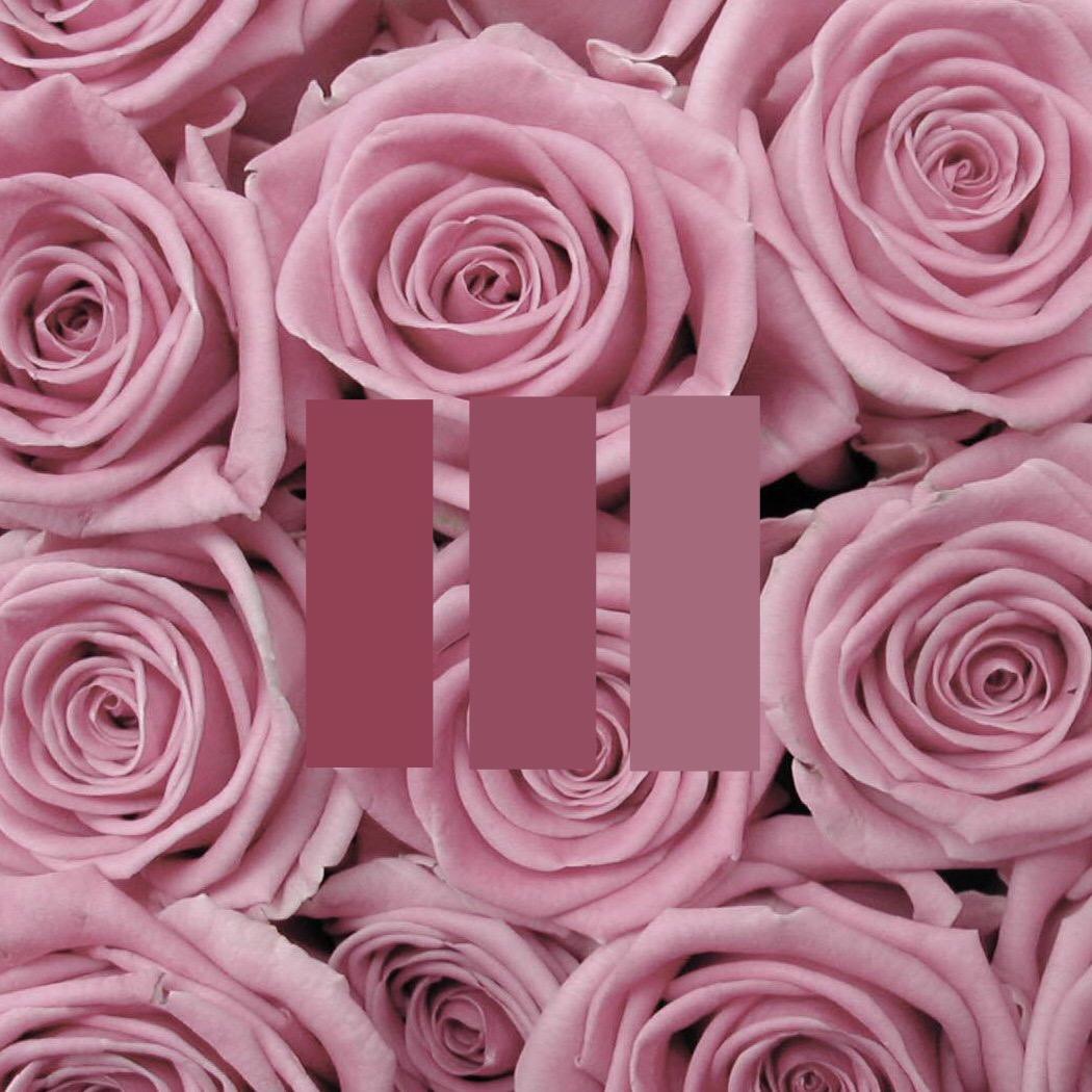pink rose aesthetic freetoedit