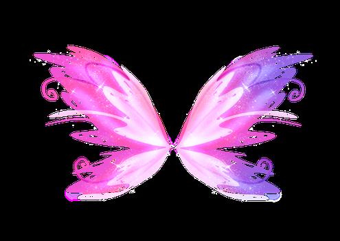 Fairy Fairywings Faries Pink Purple Wings Cute Freetoed