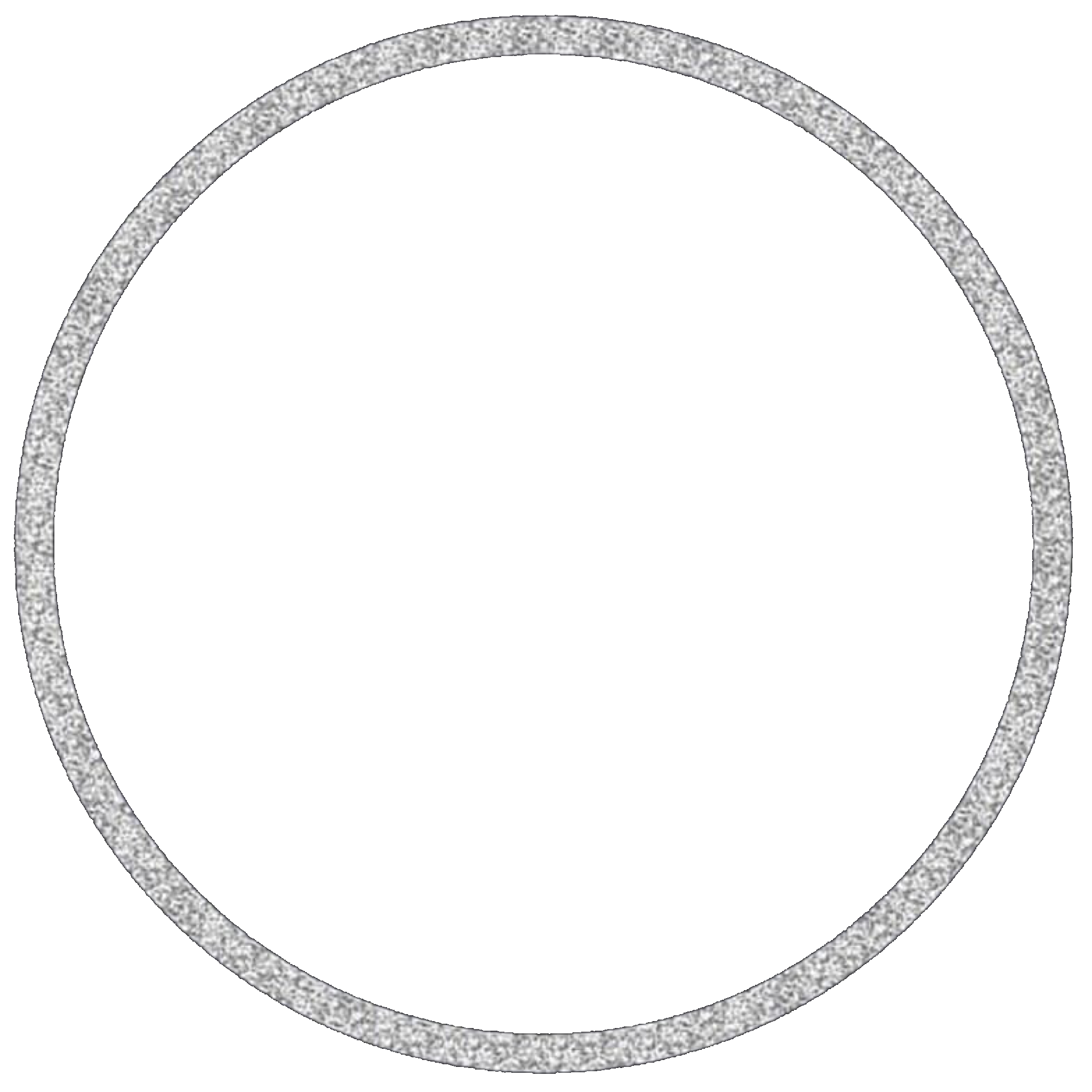 circle silver silvercircle glitter frame circleframe...