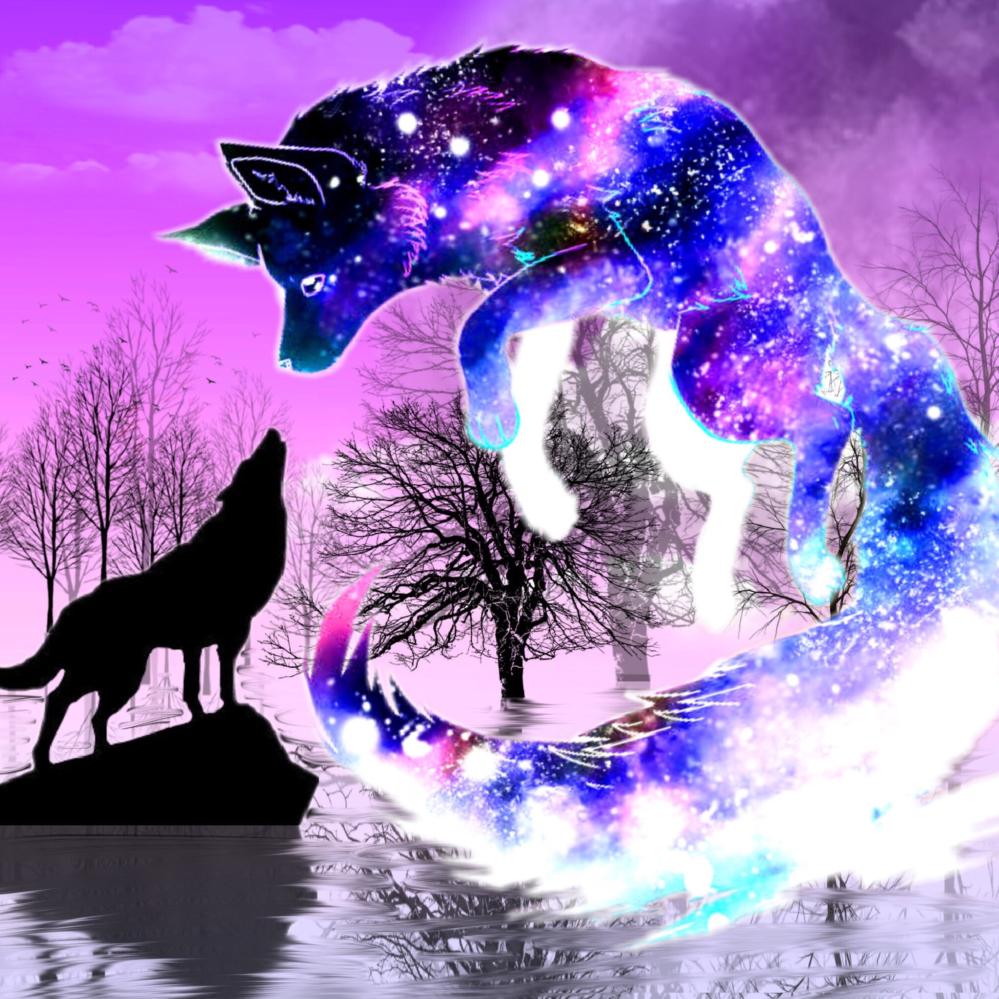 Wolf Wolves Silhouette Silhouettes Galaxy Reflection