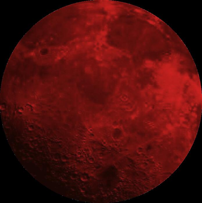 Moon Circle Redmoon Red Sticker By Beata