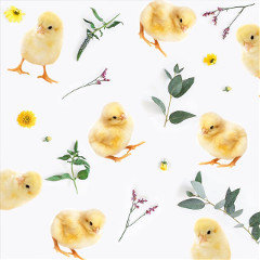 Get,into,the,Easter,spirit,with,us!,In,this,Challenge,,we,want,to,see,awesome,stickers,that,capture,this,day,-,from,Easter,eggs,,rabbits,,flowers,and,more!