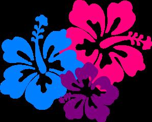 hibiscus flowers freetoedit