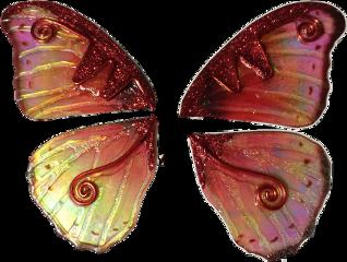wings butterfly butterflywings fairy fairyland