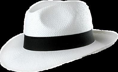 cap freetoedit chapeu