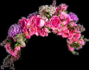 flower flowers pink freetoedit