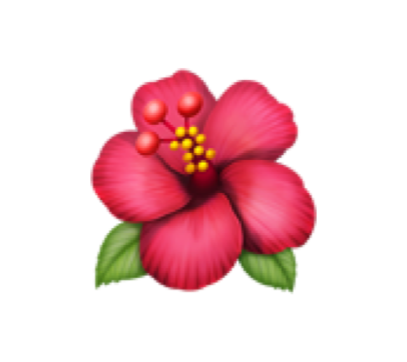 Emoji flower ios10 interesting freetoedit emoji flower ios10 interesting freetoedit mightylinksfo