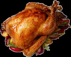 turkey freetoedit
