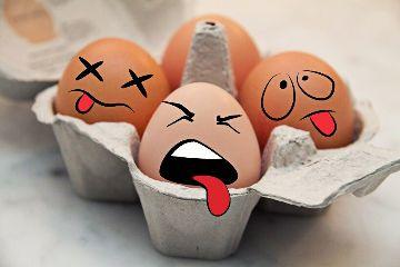 wapobjectemotions funny eggs emoticon