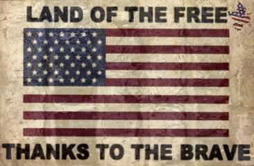 usa flag memorialday freetoedit remixit