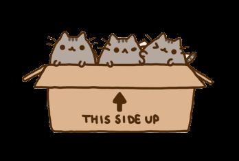 #cat #kawaii #box#FreeToEdit
