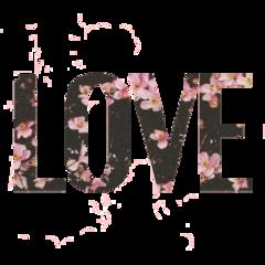 tumblr cute flowers love text