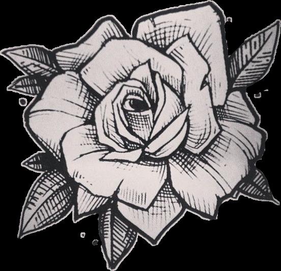 #Rose# drawing#FreeToEdit
