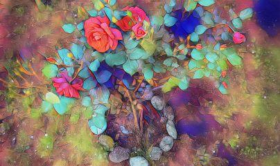 picsart flora magiceffects rose plant