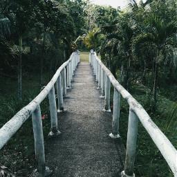 paths freetoedit