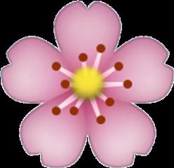 flower colorful emoji freetoedit