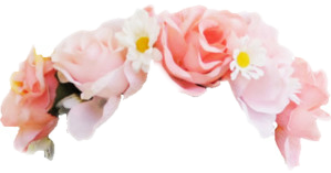 flower flowercrown tumblr