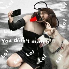 freetoedit remixed dogs