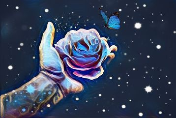 freetoedit butterfly rose flower astethic