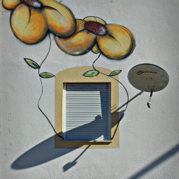 happyweekendeveryone exploringthecitystreets house windows streetart