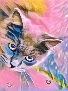 cat pastel cute petsandanimals