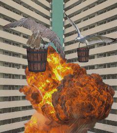 freetoedit explosion birds bucket
