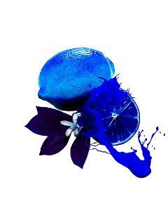 lemon blue bluelemon juice splatter