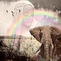 rainbowstickerremix freetoedit rainbow rainbowsticker dailysticker