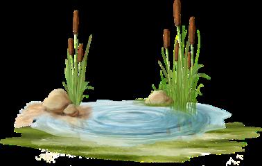 grass freetoedit