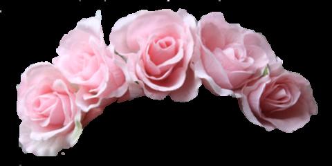 filter snapchat flower crown flowercrown