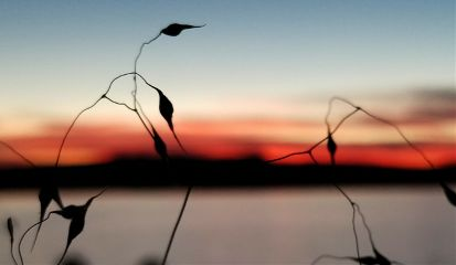 sunset beautiful emotions love freetoedit