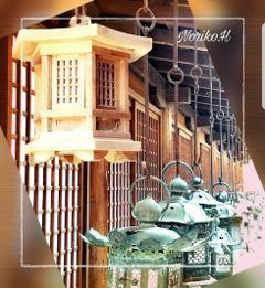 japan travel shrine historic lantern freetoedit