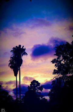 freetoedit remix remixme colorful photography