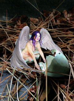 beutifulgirl hatching fairy fancy robinegg