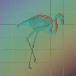 freetoedit aesthetic flamingo