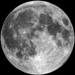 luna freetoedit