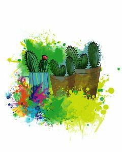 cactus plantes oilpaintingeffect watercolor colorful