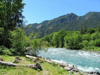 nature summer freetoedit
