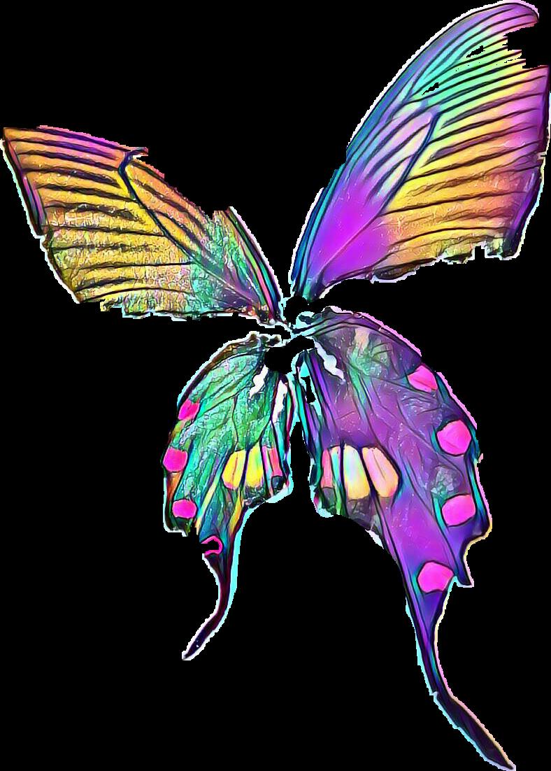 #butterfly #freetoedit