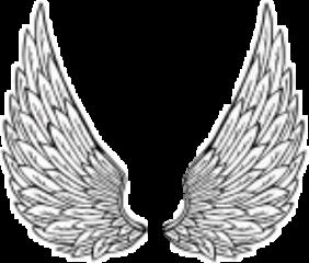 angel black tumblr freetoedit