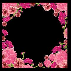 frames love ilu rose iloveyou