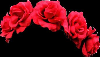 red flower flowers flowercrown crown