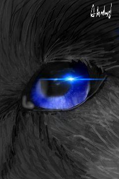 eyes blueeye wolf wolfeye drawnwithpicsart