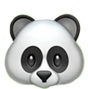 oso panda blancoynegro wpp whatsapp