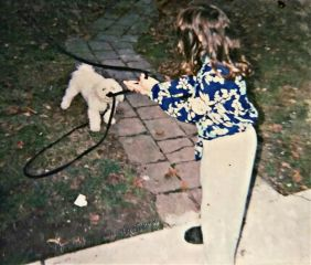 dpcpetwalking dog girl petsandanimals photography