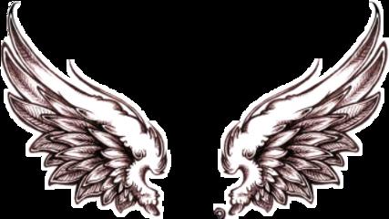 wings angelwings freetoedit