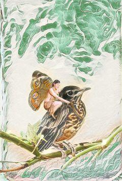 bird fairy fantasy cutegirl butterfly